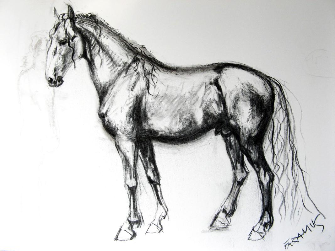Kresby Isabela Wallo