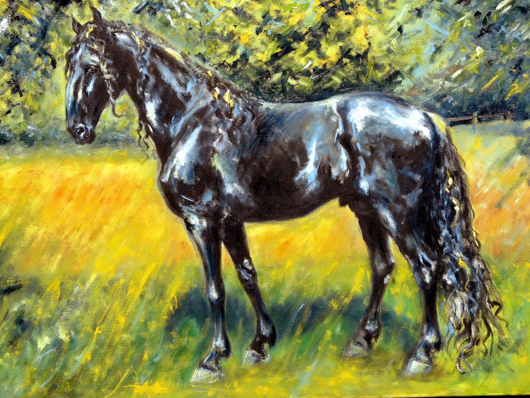 portrét kladrubský kůň, kůň v krajině, obraz na zakázku, ručně malovaný, obraz na stěnu, olej na plátně, malba od umělce, česká malířka, galerie obrazů zvířat, moderní umění, umělecké dílo na prodej, obraz z fotky