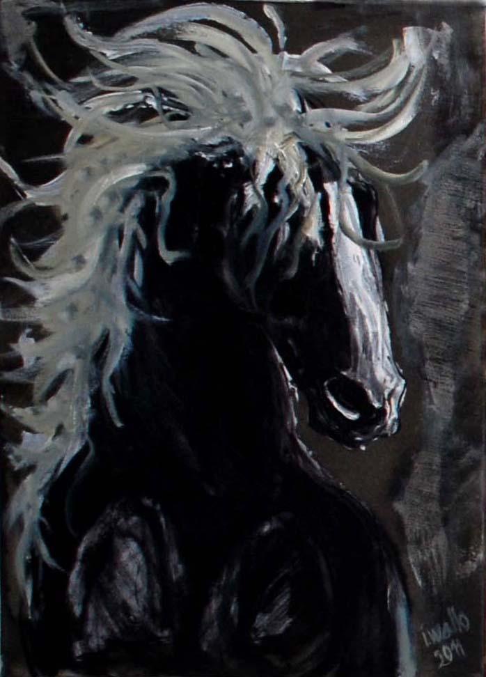 Černý kůň / olej na plátně / 2011 / 50 x 60 cm