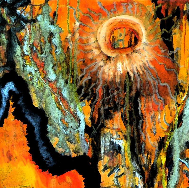 Mikrosvět č. 3 / olej na plátně / 2012 / 50 x 40 cm