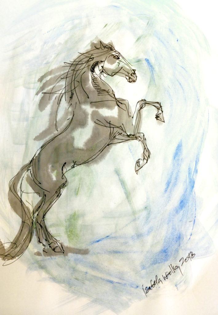 Vánoční kůň s modrou / kolorovaná perokresba / A4 / rámováno ve skle