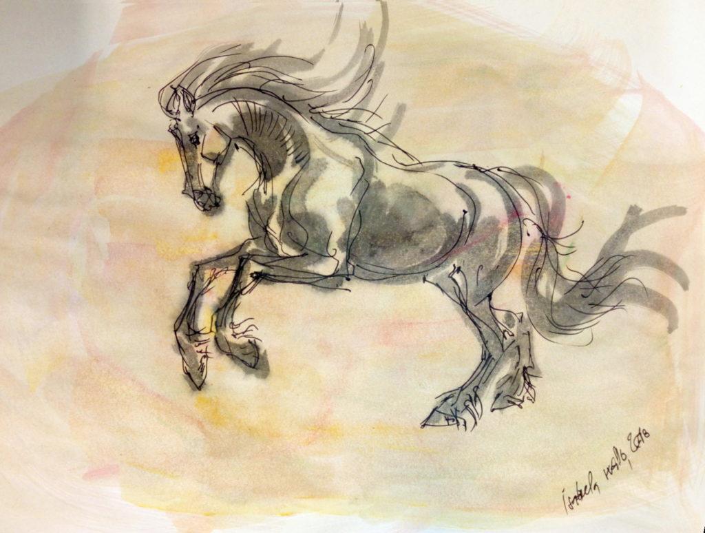 Vánoční kůň s oranžovou / kolorovaná perokresba / A4 / rámováno ve skle