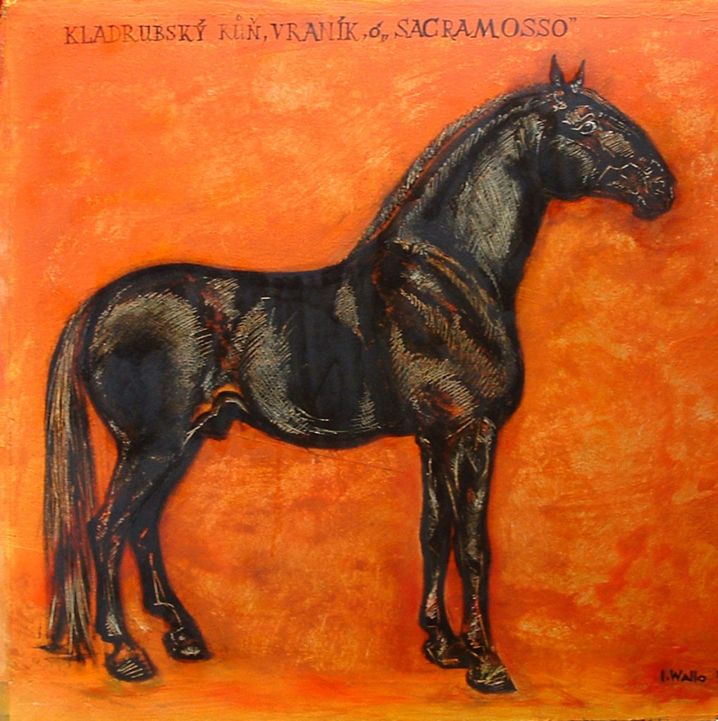 Vraník Sacramosso / kladrubský kůň / akryl na překližce / rok / rozměry